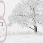 Nueva Colección Otoño Invierno 2018 Mipe Textil Elda España